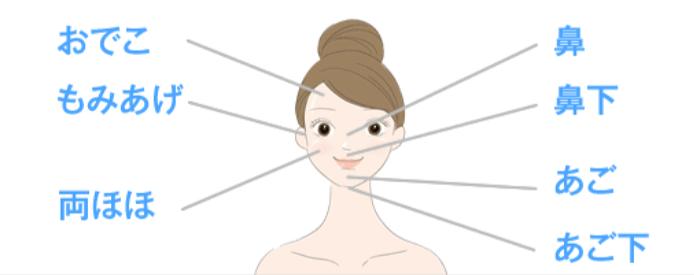 キレイモ顔脱毛の範囲を紹介するイラスト