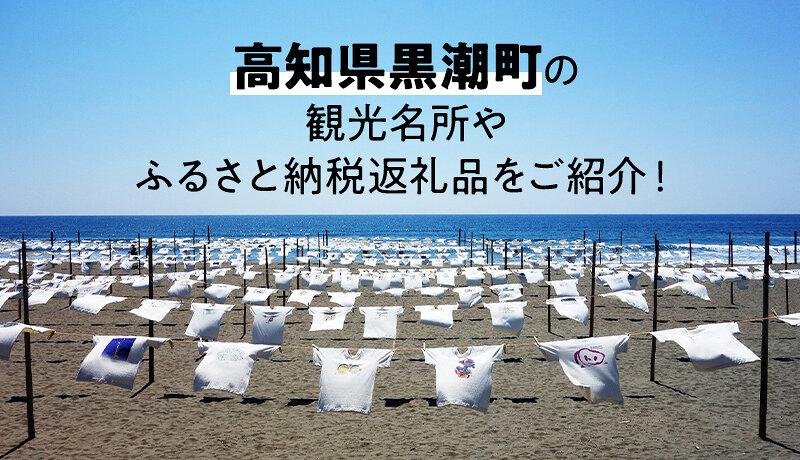 高知県黒潮町の豊かな海をふるさと納税で満喫しよう!観光名所や人気の返礼品をご紹介